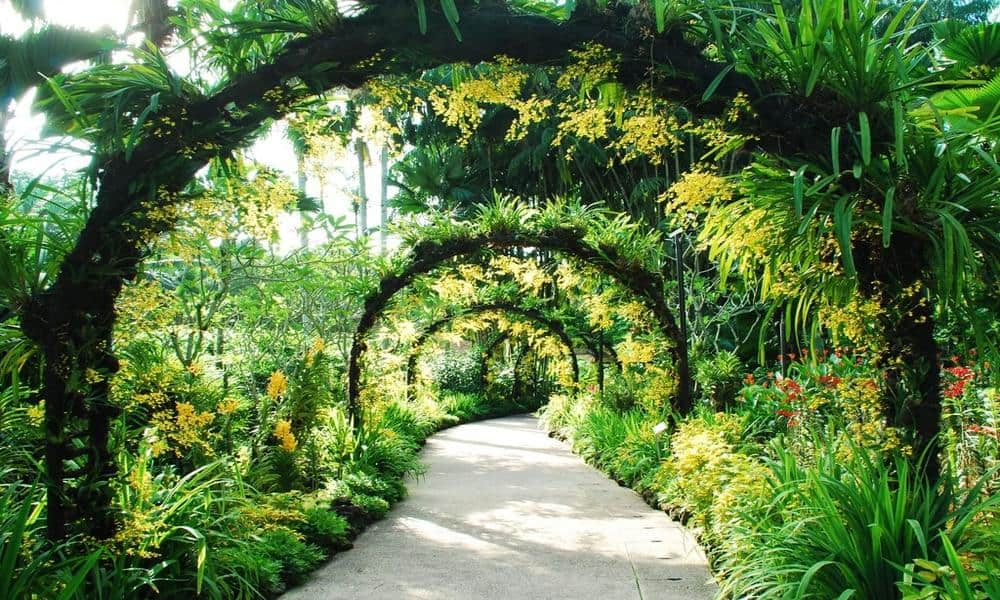garden walk for elderly singapore