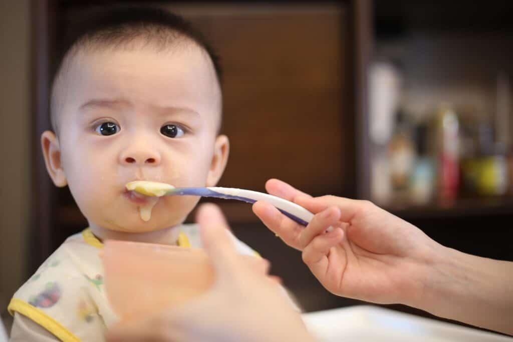 baby food blender in singapore 2020
